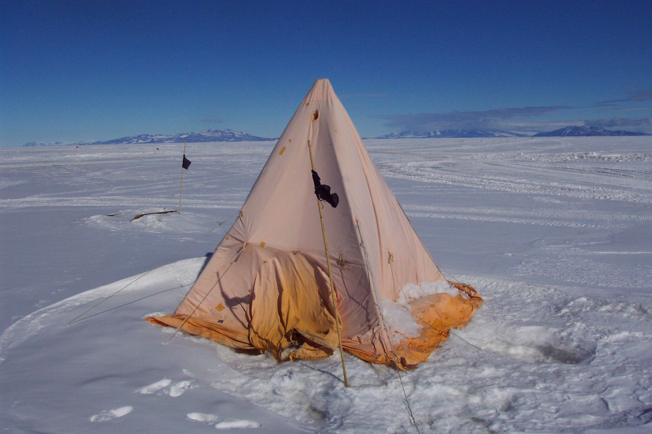 The two researchers were tracking the ing and feeding habits of the birds by means of a clever bridge they constructed so that the birds have to cross ... : antarctic tents - memphite.com